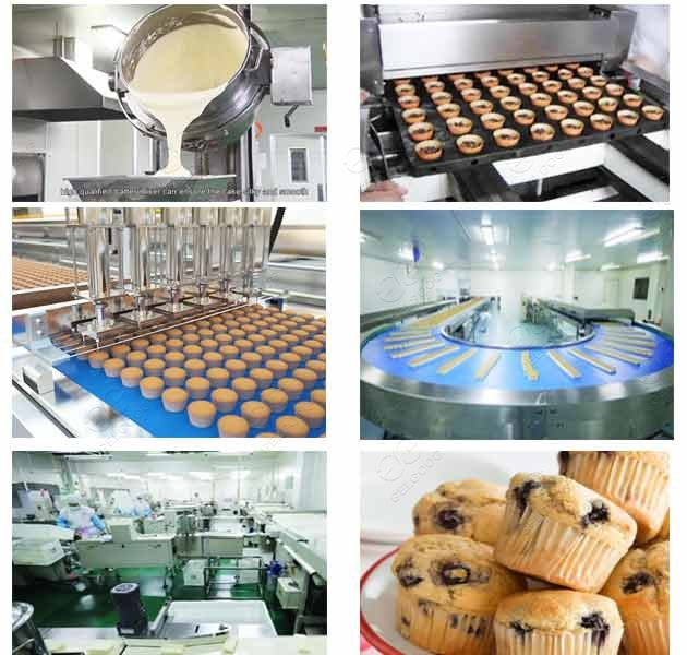 automatic muffin making plant
