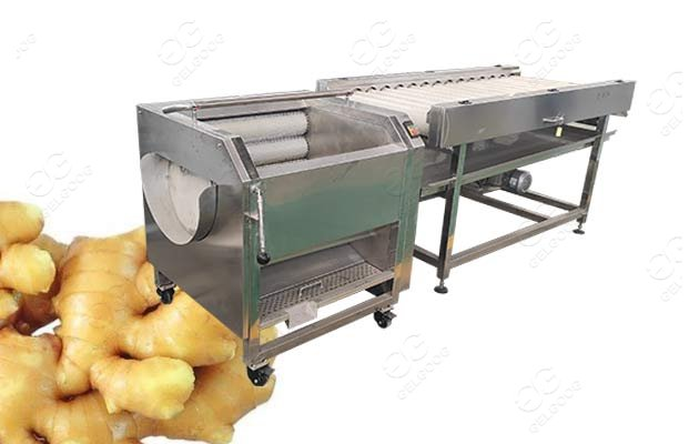 ginger peeling machine price