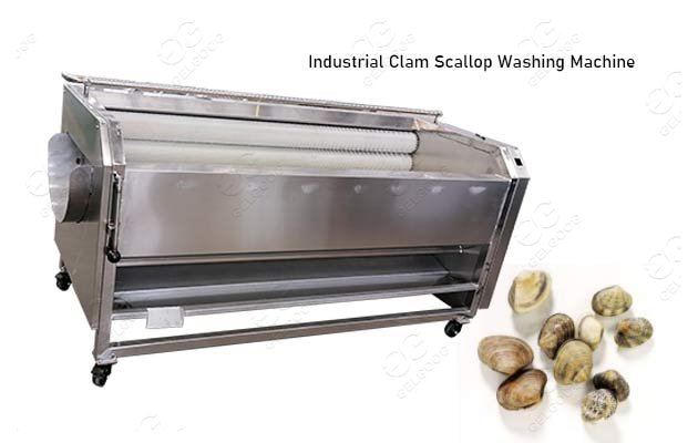 clam cleaning machine price