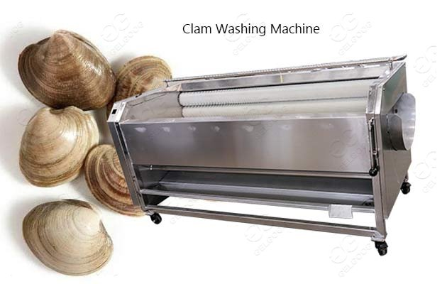 industrial clam washing machine
