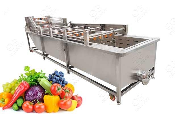 automatic fruit washing machine price