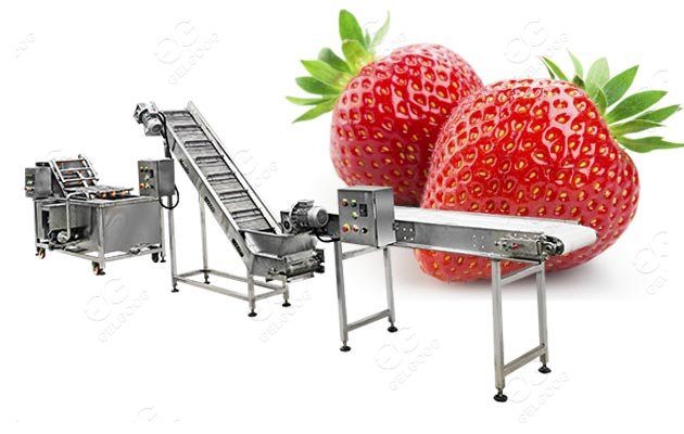 commercial strawberry cleaning machine