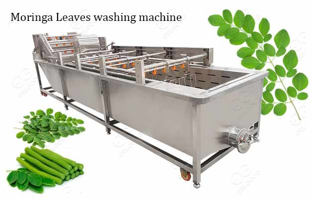 moringa leaves washing machine