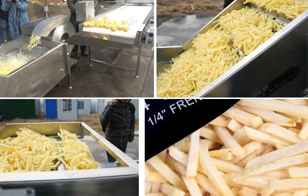 frozen french fries making plant
