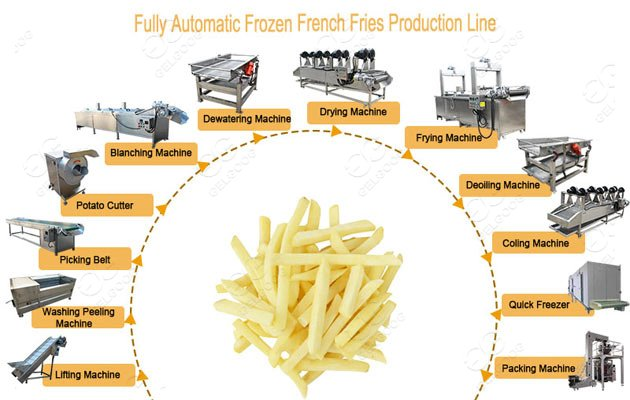 frozen french fries processing plant