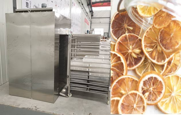 lemon drying machine for sale