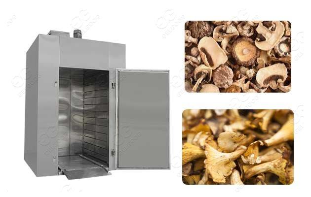 commercial mushroom dryer for sale
