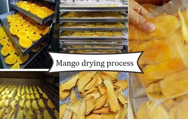 mango dehydrated dryer machine