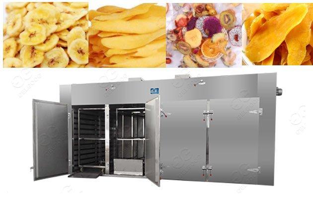 mango fruit dryer machine price