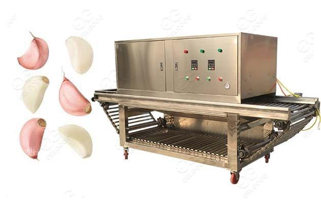 garlic peeler machine price