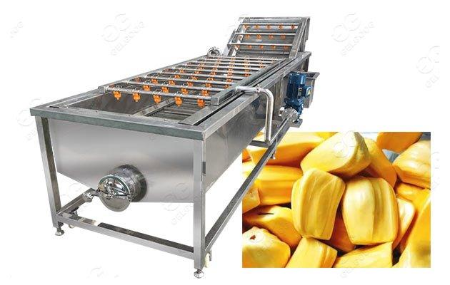 jackfruit washing machine supplier