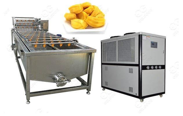 automatic jackfruit washing machine