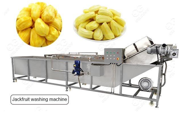 automatic jackfruit cleaning machine
