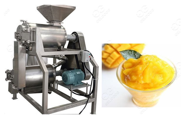 mango juice processing machine
