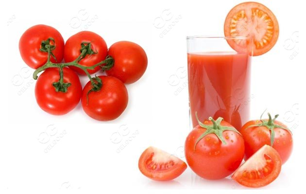 tomato juice production line