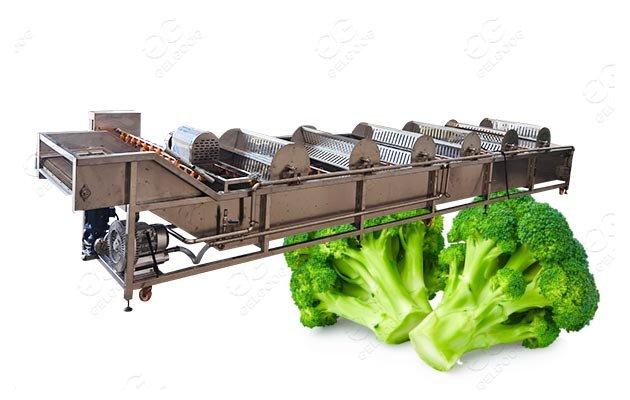 industrial broccoli washing machine