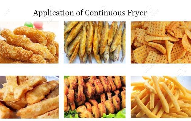 continuous fryer for sale