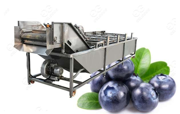 industrial blueberry washing machine