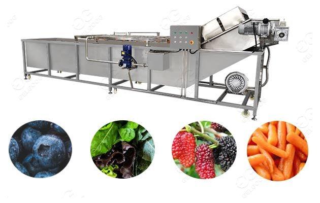 fruit blueberry washing machine