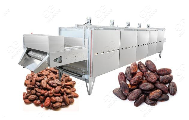cocoa roasting machine price