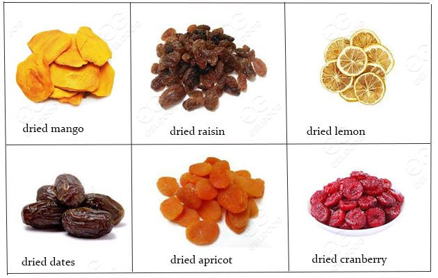 industrial fruit dehydrator