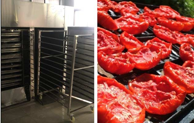 industrial tomato dehydrator machine