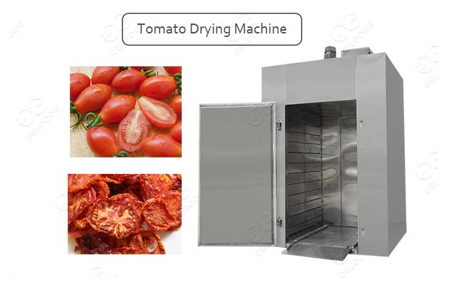 industrial tomato drying process