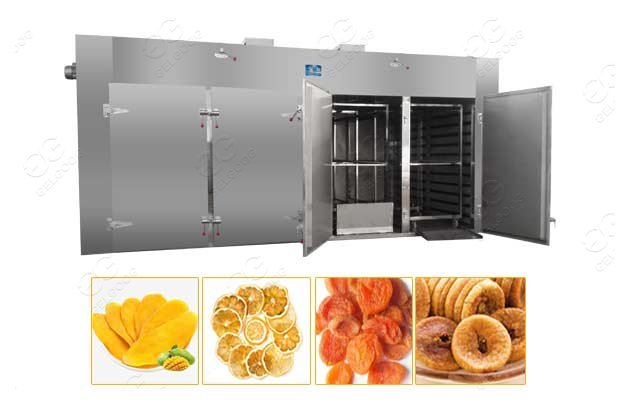 fig drying machine for sale