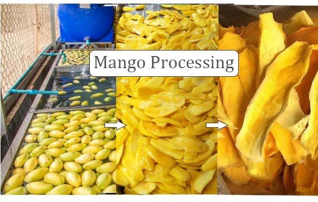 mango fruit washing machine