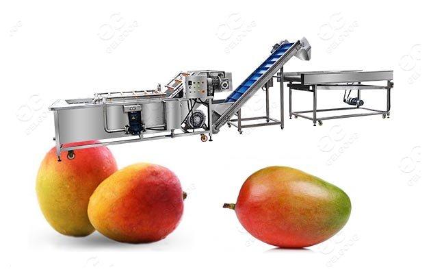 mango processing machine cost