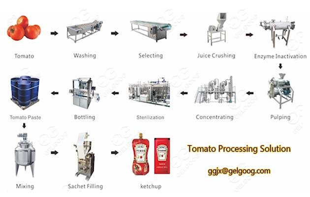 automatic tomato processing solution