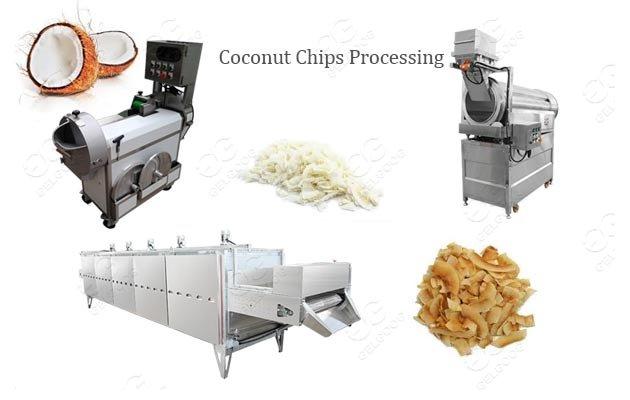 coconut chips machine supplier