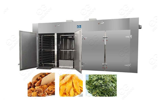 fruit chips drying oven