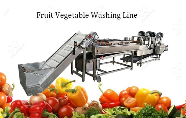 fruit vegetable washing line